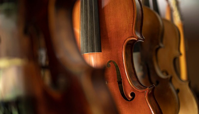 Viola Vs Violin: Which is Better In 2021